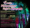 A Little Midsummer Night's Dream :